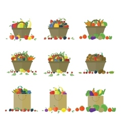 Fruits and vegetables in basket set vector image