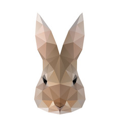 Low poly hare rabbit vector
