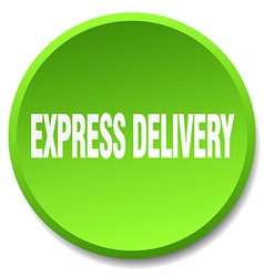 Express delivery green round flat isolated push vector