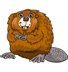 Beaver animal cartoon vector