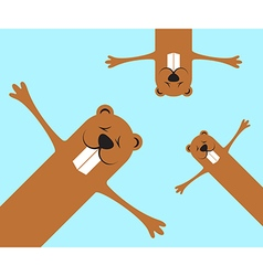 Groundhog day funny marmots background vector
