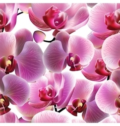 Orchid seamless pattern eps10 vector