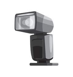 Photoflash icon cartoon style vector image vector image