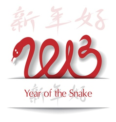 Year of the Snake 2013 applique background vector image vector image