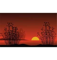 Bamboo on background of a dawn vector