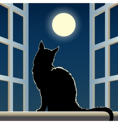 Cat on a window sill vector