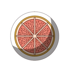 Delicious grapefruit fruit isolated icon vector