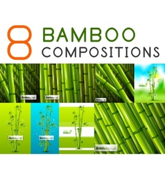 Set of nature bamboo designs vector image