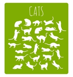 Cats In Various Poses vector image vector image
