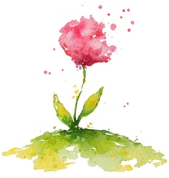 Hand painted pink watercolor flower vector