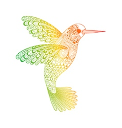 Zentangle stylized hummingbird hand drawn isolated vector