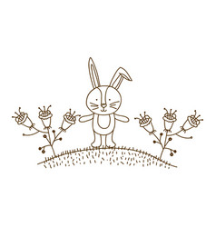 brown contour graphic of bunny in hill with plants vector image vector image