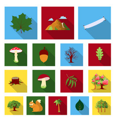 forest and nature flat icons in set collection for vector image vector image
