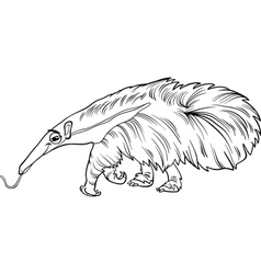 Anteater animal cartoon coloring book vector