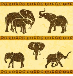 African elephants set vector