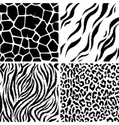 animals Seamless Pattern vector image
