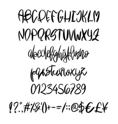 hand painted latin alphabet vector image vector image