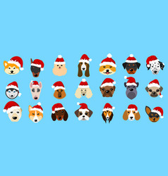 Set different breeds of dogs in hats of santa vector