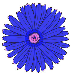 blue gerbera drawing by hand vector image vector image