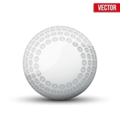 Classic Hockey Field Ball vector image vector image