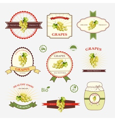 Grapes a set of label design and templates vector