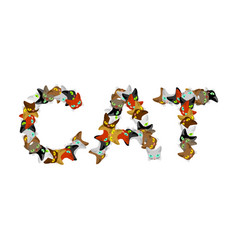 Cat sign text letters of cats pet font home vector