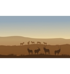 Antelope and zebra on the hills vector