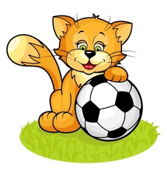 Cat with soccer ball vector image vector image