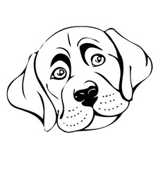 dog muzzle vector image vector image