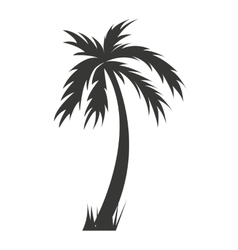 tree palm silhouette icon vector image