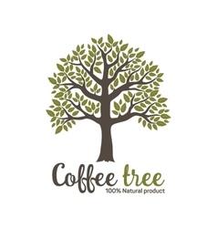 Hand drawn graphic coffee tree vector