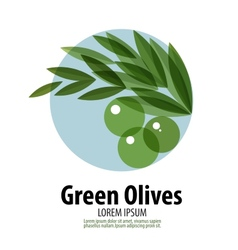 Olives logo design template harvest or food icon vector image