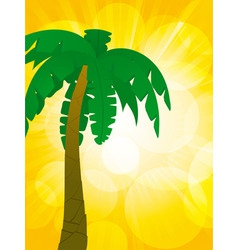 Palm tree and glowing background vector
