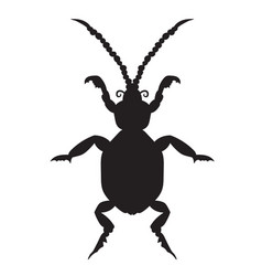black silhouette of a beetle on a white background vector image vector image