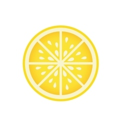 Delicious orange fruit isolated icon vector image