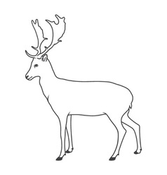 Noble deer vector image vector image