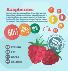 Raspberry infographics in flat style vector