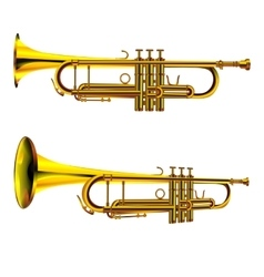 Trumpet isolated object vector image