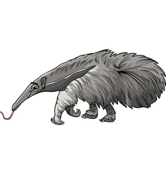 Anteater animal cartoon vector