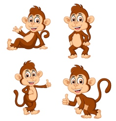 Monkey many expressions vector