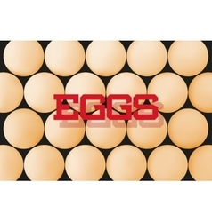 Abstract background with eggs vector