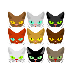 Cat face set head cats different color muzzle pet vector