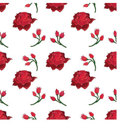 handdrawn rose and rosebud seamless pattern vector image