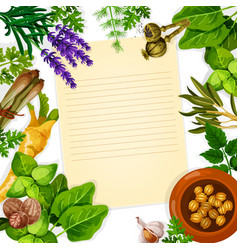 Recipe paper with herb spice and leaf vegetable vector