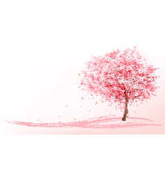 Beautiful background with a pink blooming sakura vector