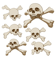 human skull with crossbones vector image