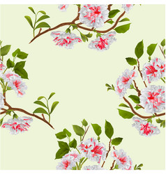 Seamless texture branch white hibiscus tropical vector