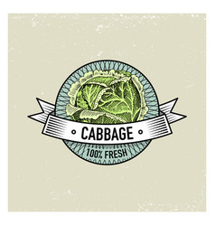 Cabbage vintage set of labels emblems or logo for vector