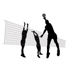 men playing volleyball vector image vector image