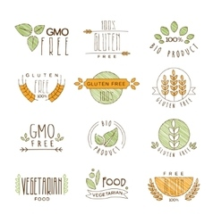 Natural Organic Labels and Icons vector image vector image